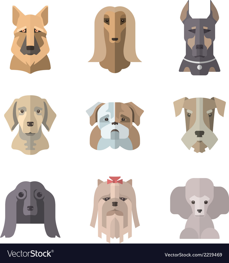 Collection of dog icons in flat style vector image