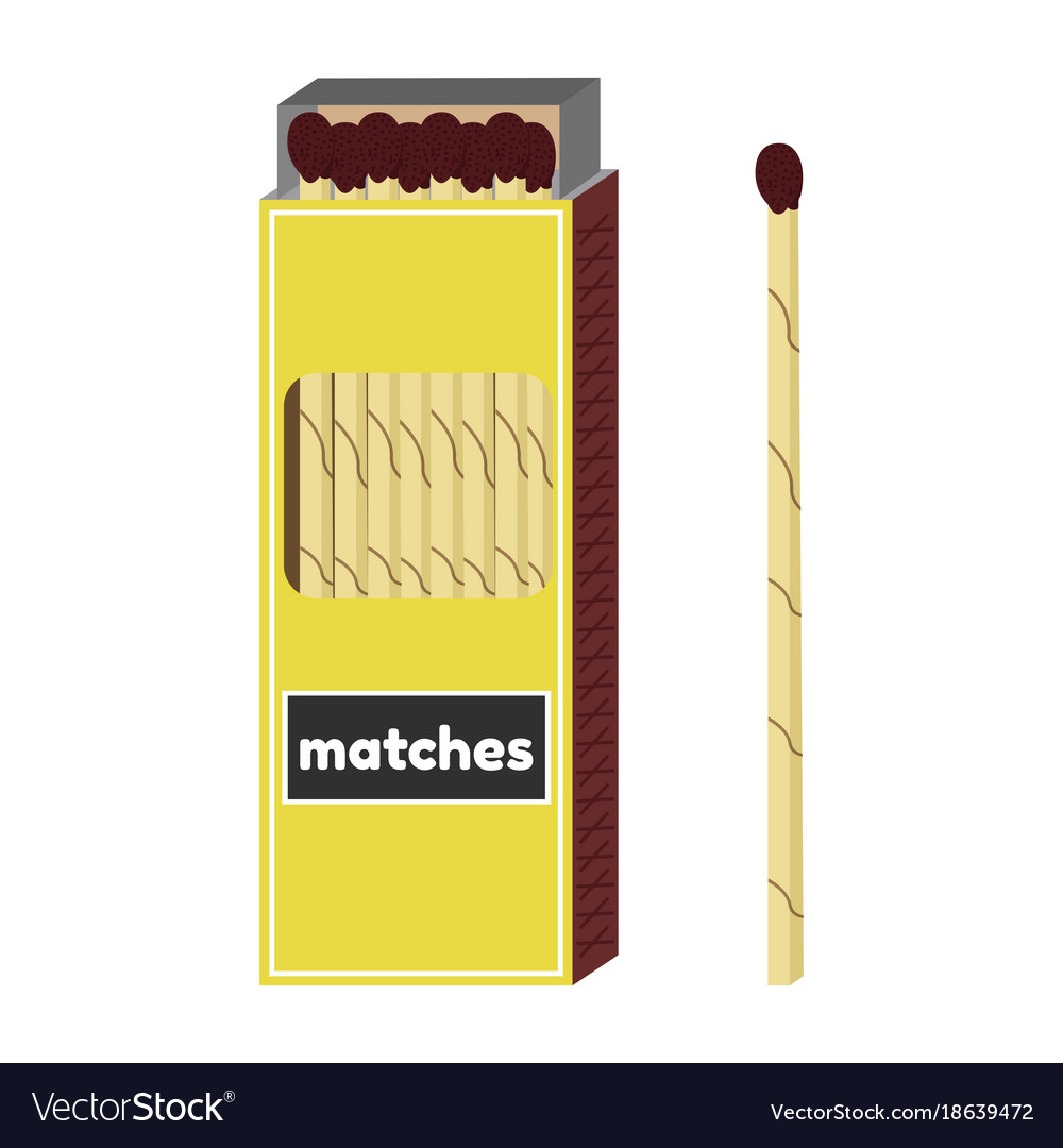 Attractive Long Fireplace Matches Vector Image