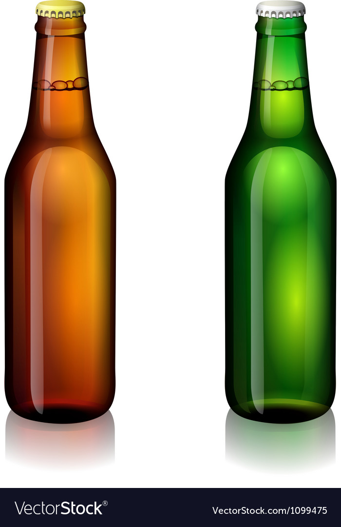 Beer bottle labels vector image
