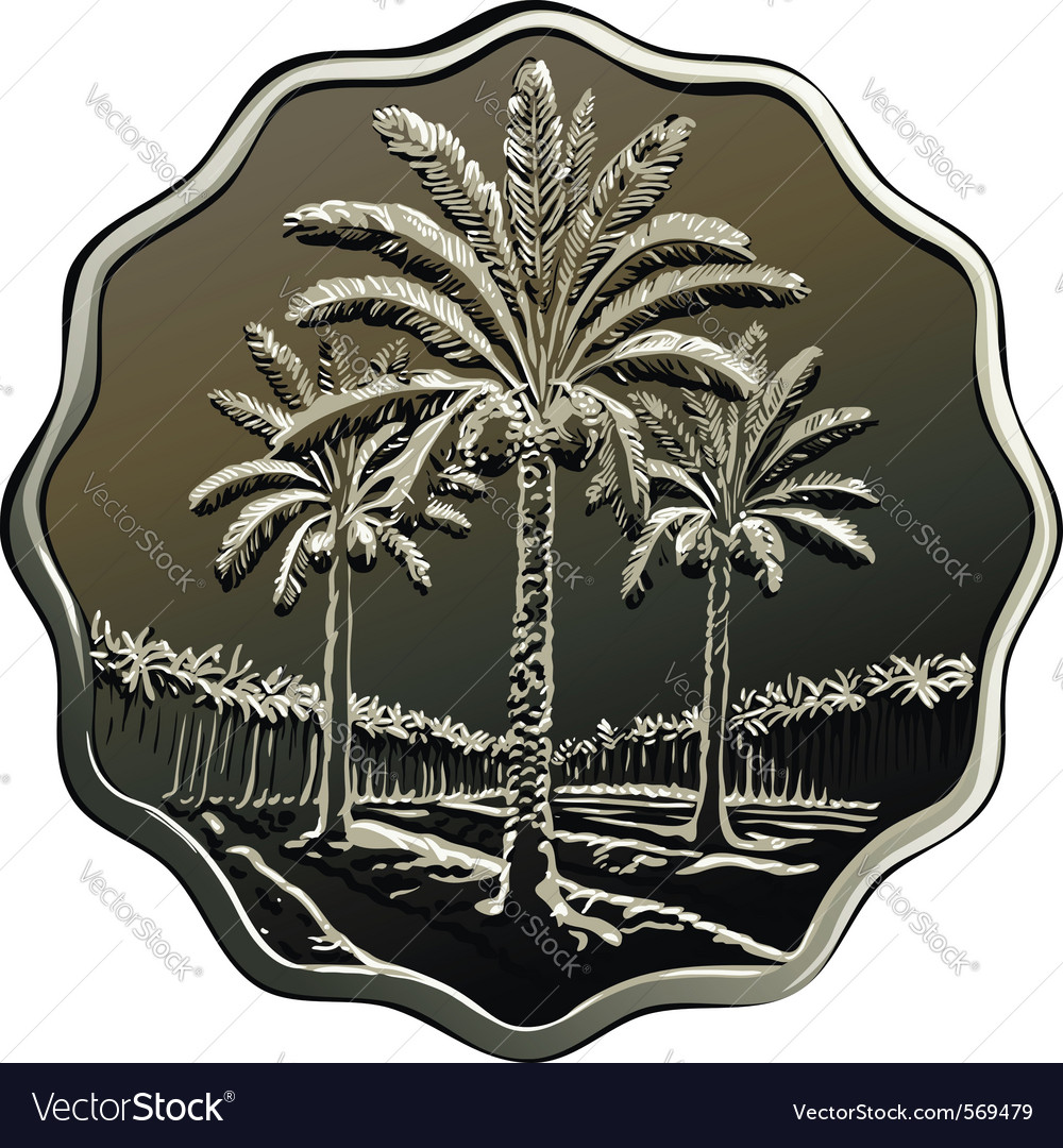 Iraqi coin vector image
