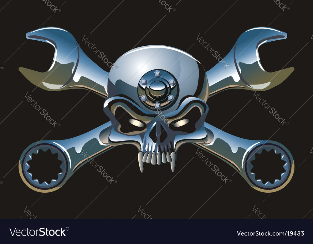Metal jolly roger vector image