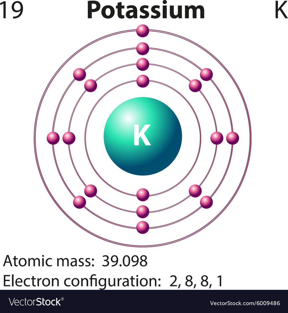 Diagram Representation Of The Element Potassium Vector Image