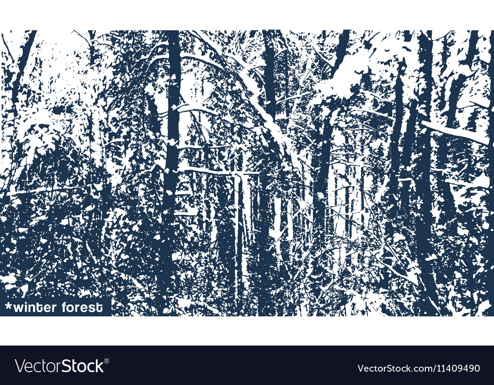 Landscape winter forest texture vector image
