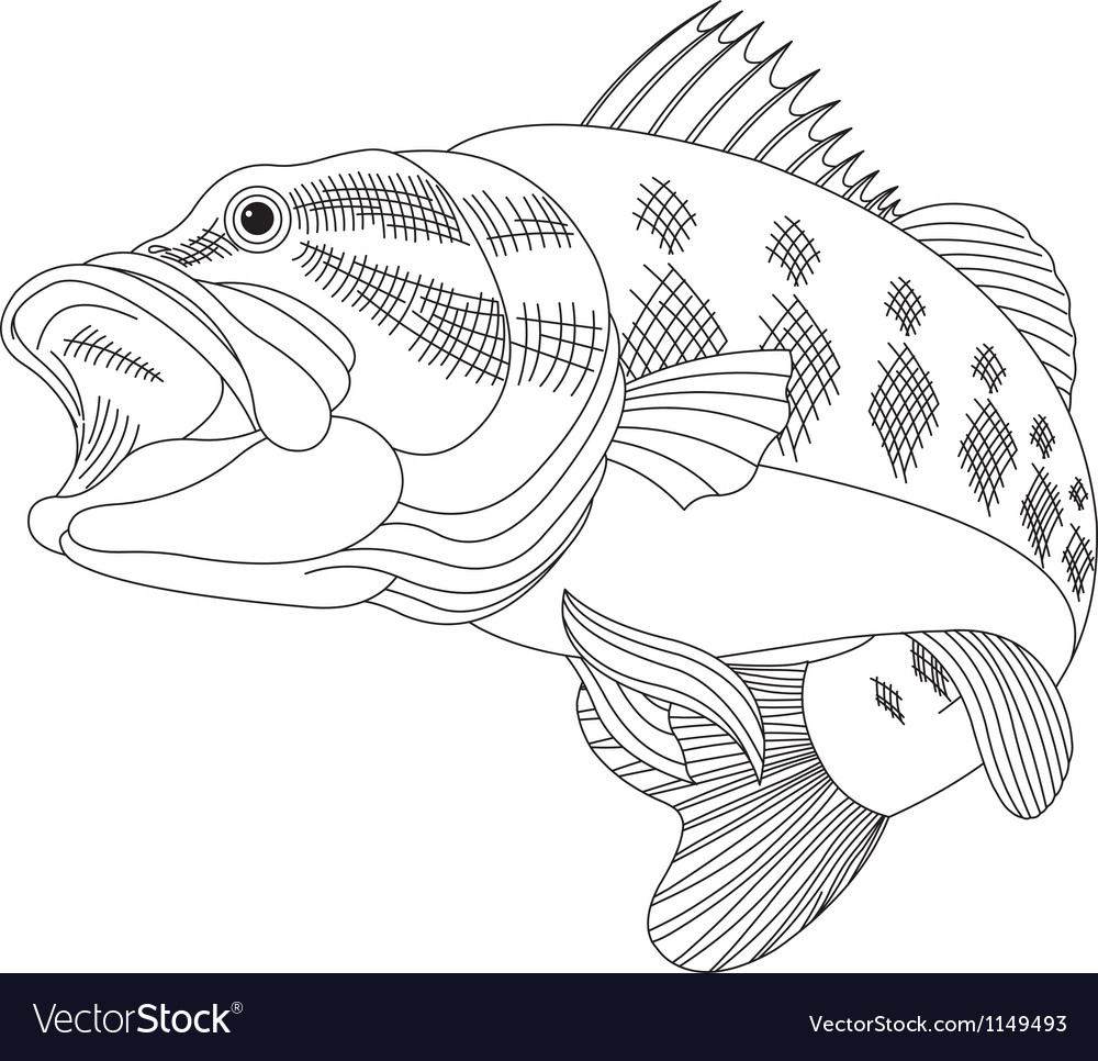 Leaping Bass vector image