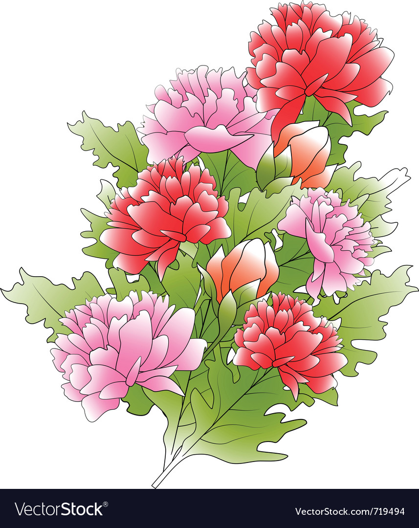Bunch of a peonies and green leafs vector image