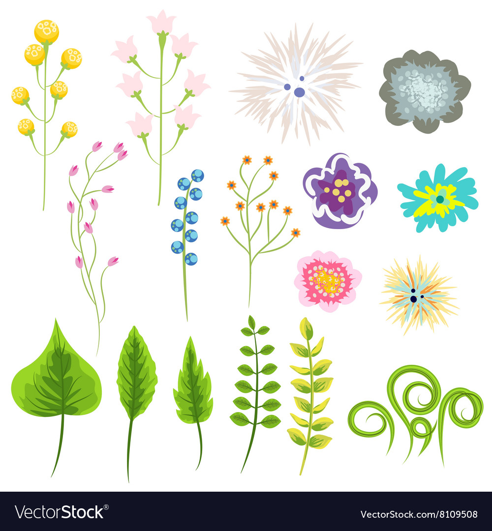 Wild flower and leaves set clip art vector image