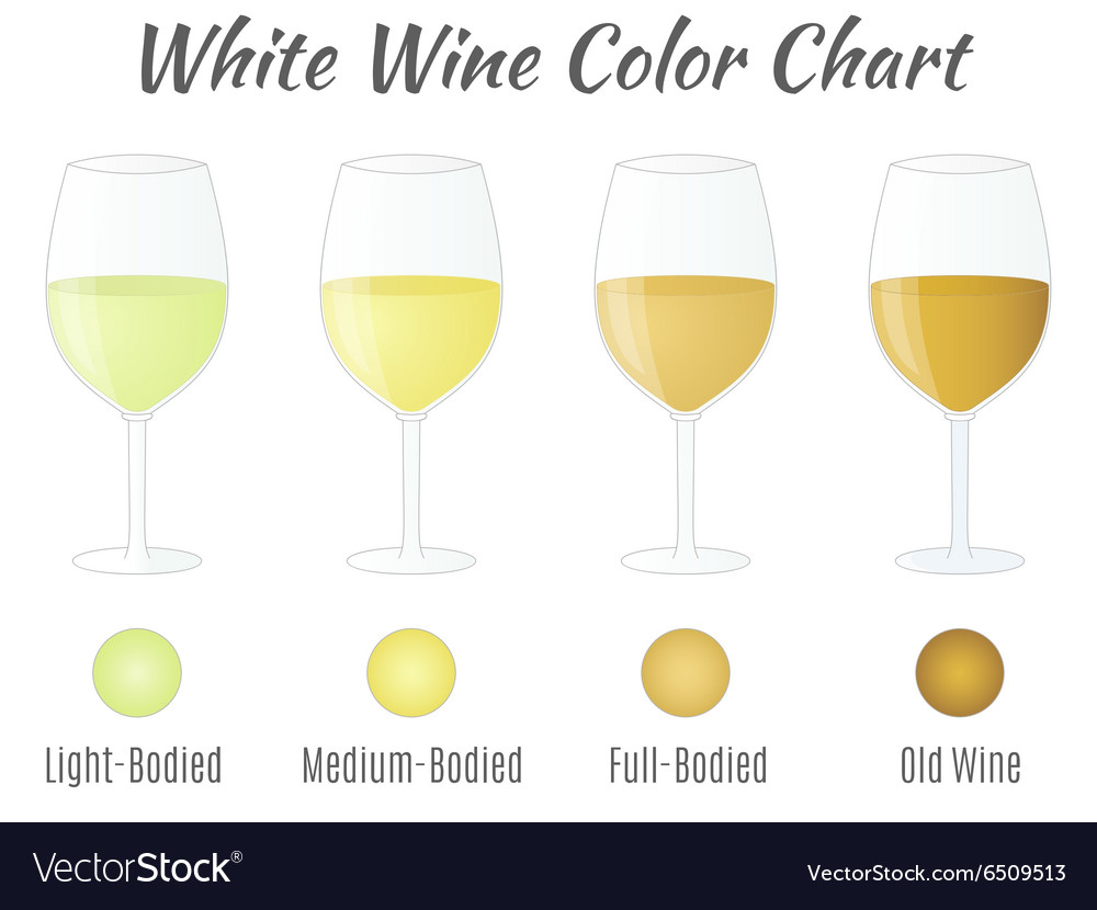 White wine color chart hand drawn wine glasses vector image nvjuhfo Gallery