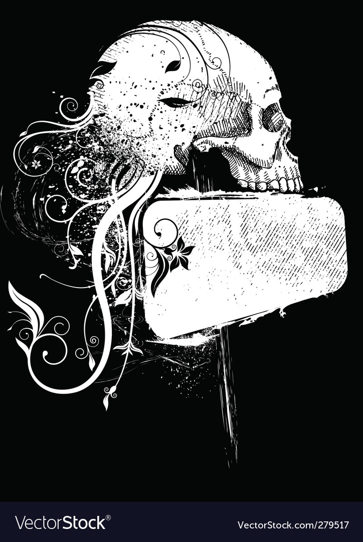 Skull and frame vector image