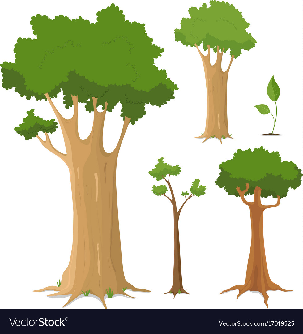 Tree collection vector image