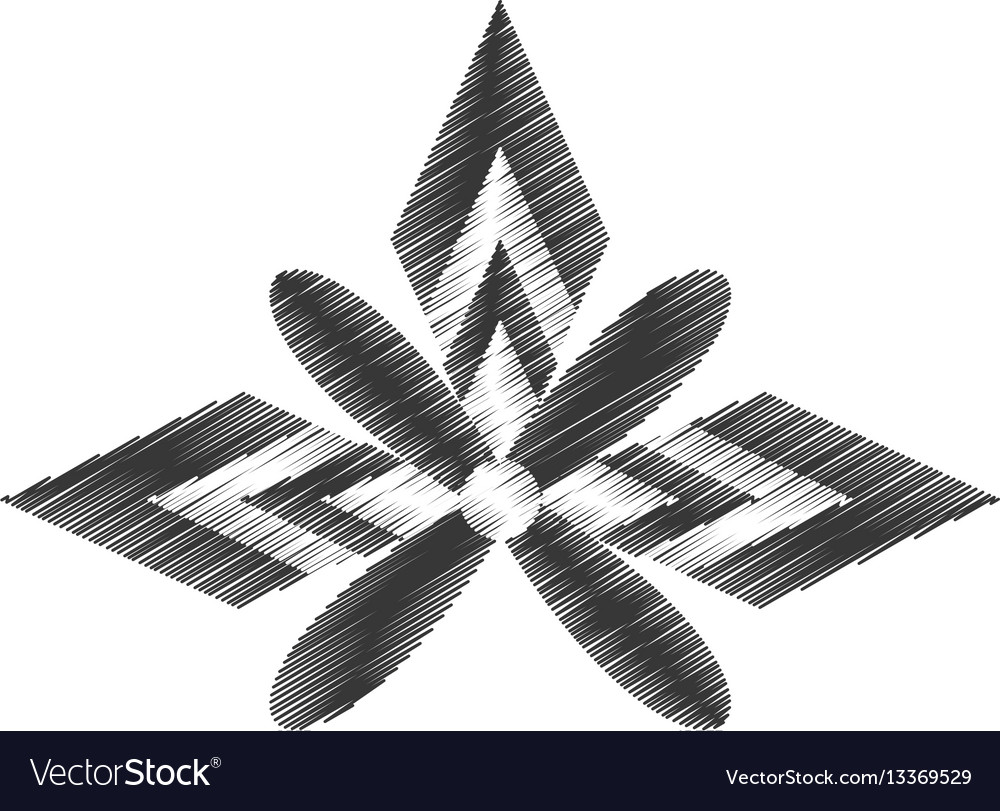 Drawing decorate ornate style design vector image