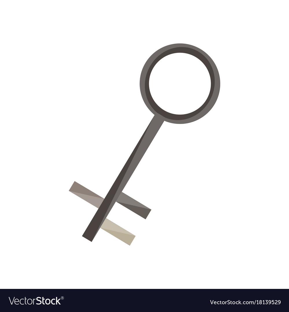 Protection keys house access line secure safety vector image