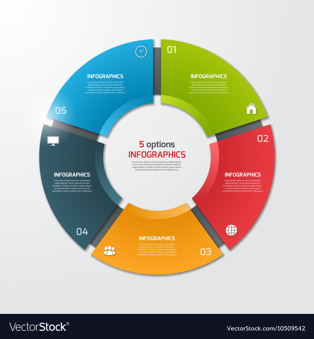 Pie chart infographic template 5 options vector image