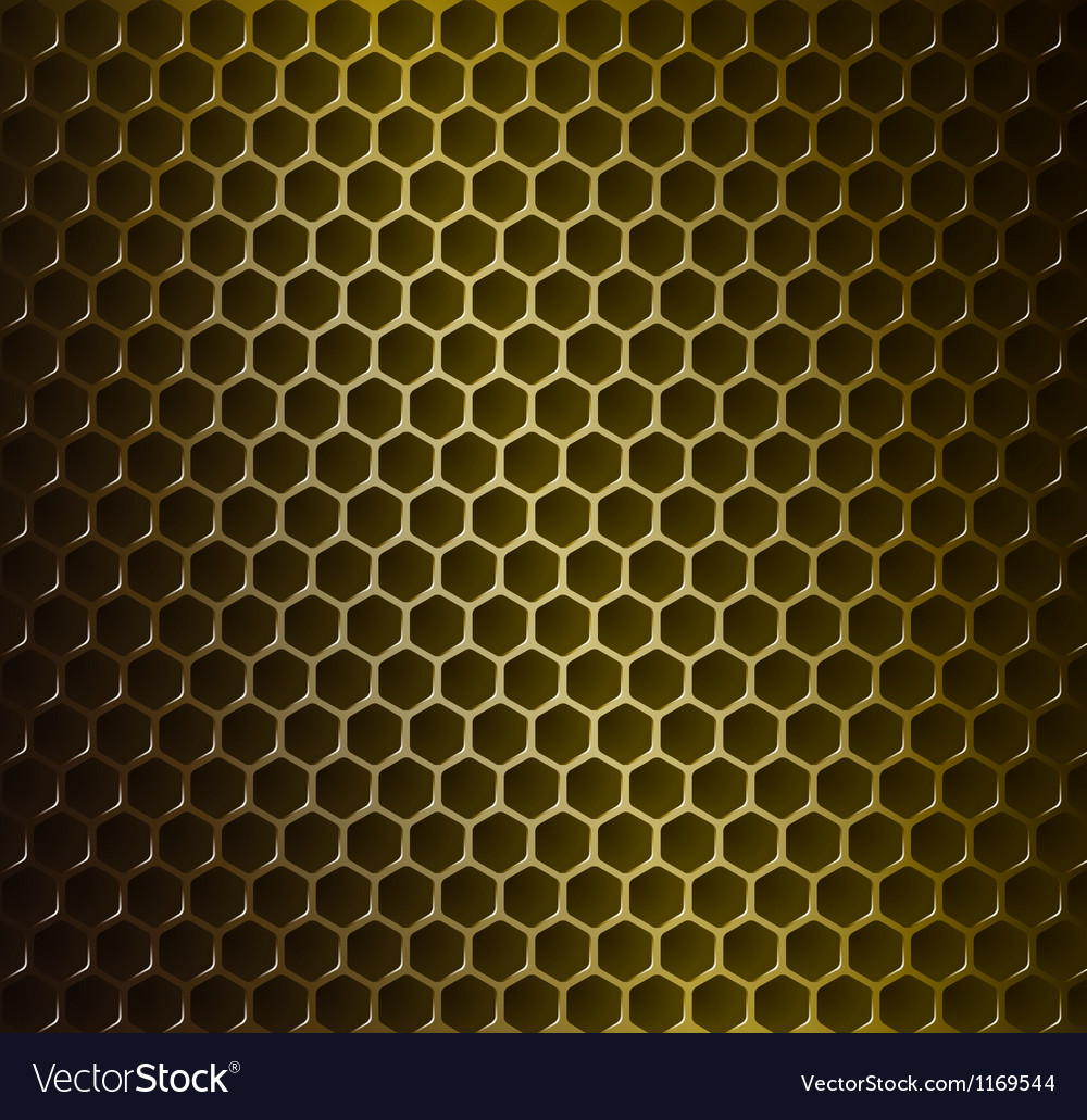 Gold metal grid vector image