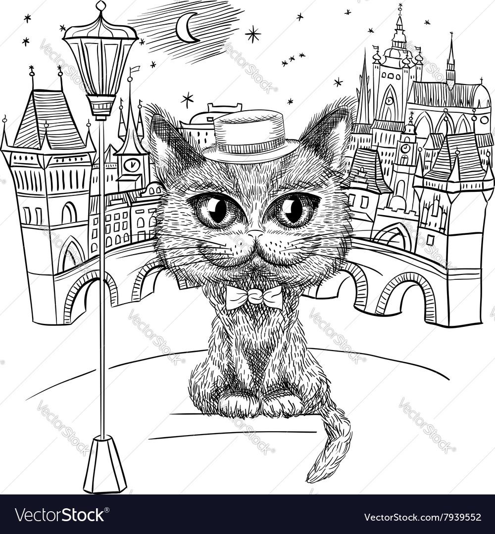 Cat in Prague Prague Castle and Charles Bridge vector image