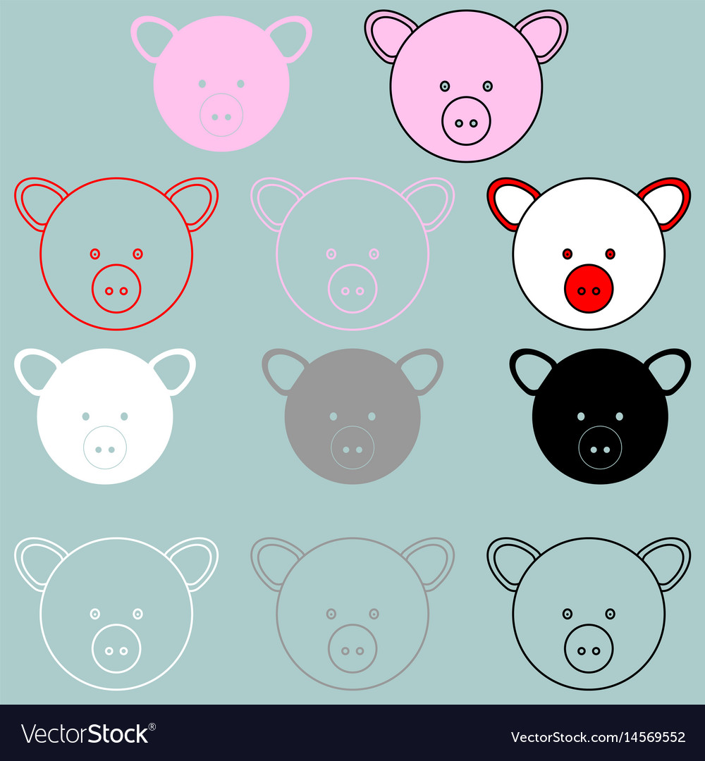 Pig face rosy red black grey white colour vector image