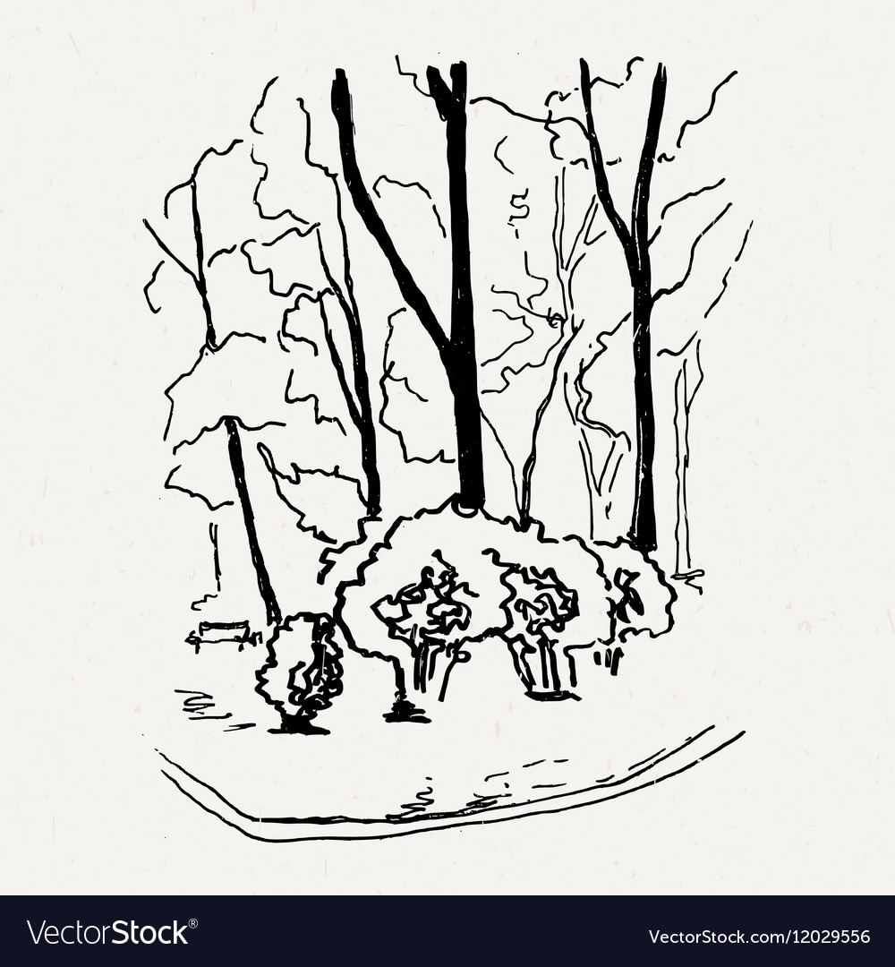 Landscape nature park trees and bushes vector image