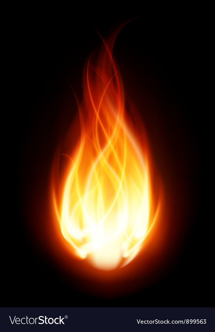 Burning Flame Fire Background Vector Image