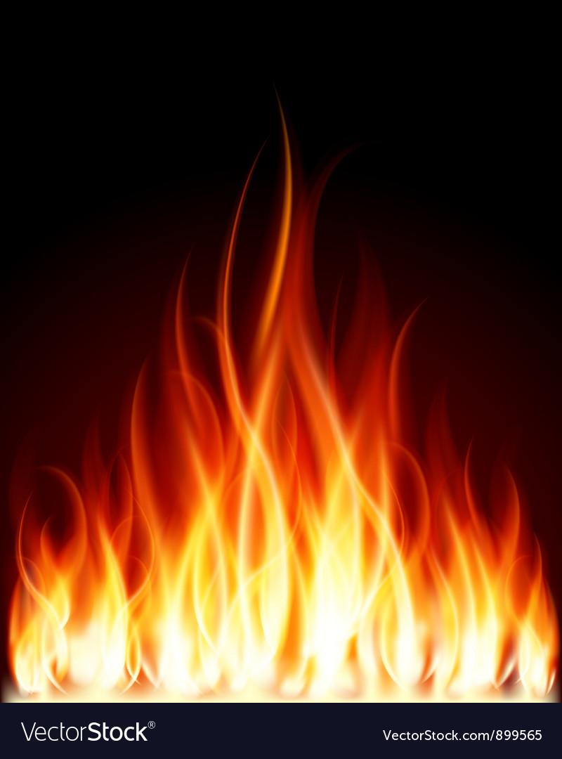 Burning Flames Background vector image