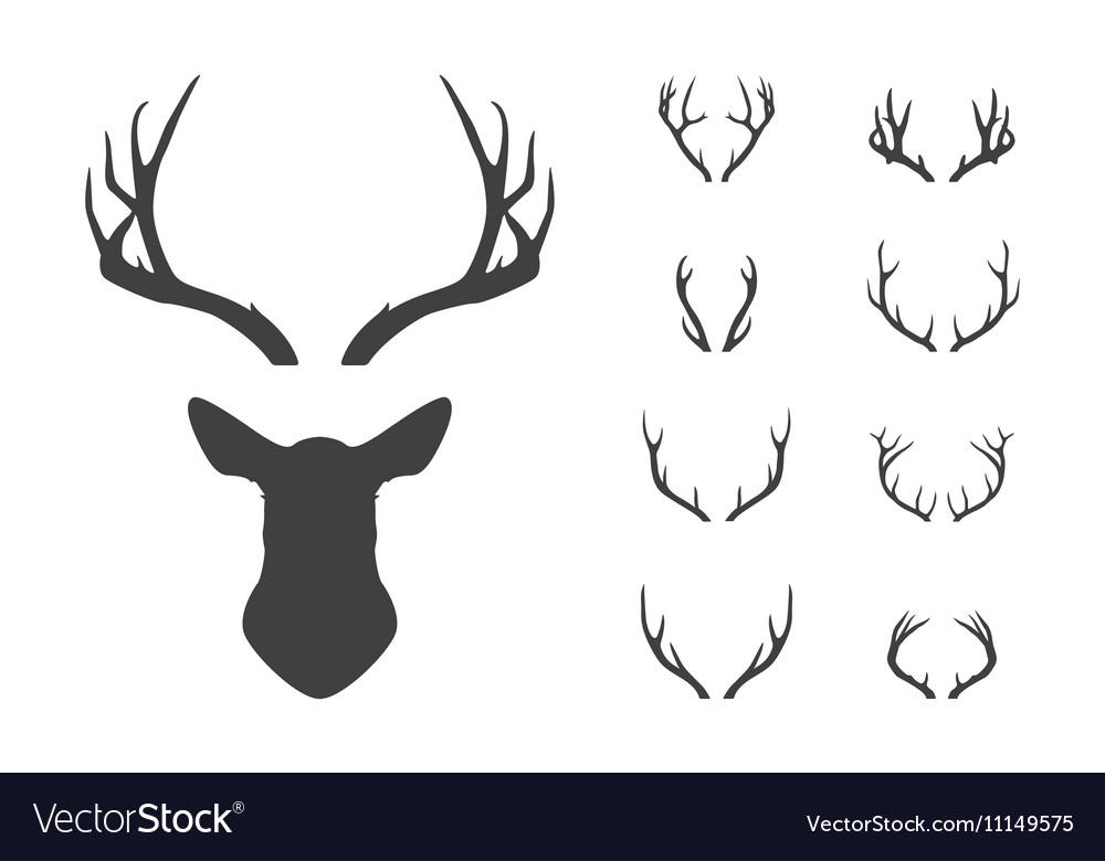 Deer s head and antlers set vector image