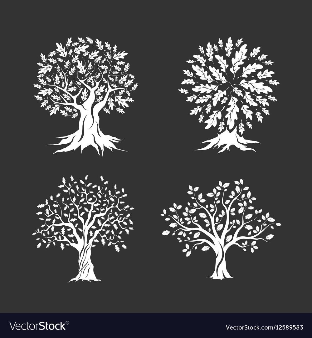 Beautiful oak trees silhouette set vector image