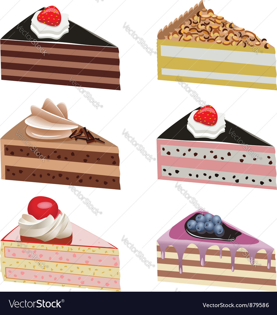 Cake slices Vector Image
