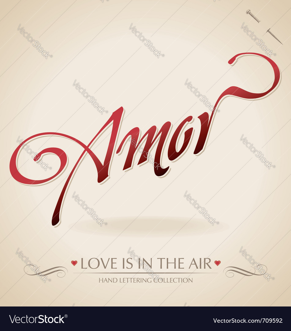 Amour hand lettering vector image