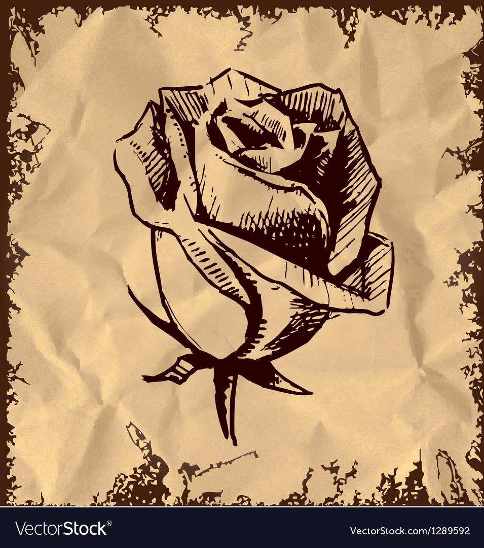 Vintage rose bud sketch vector image