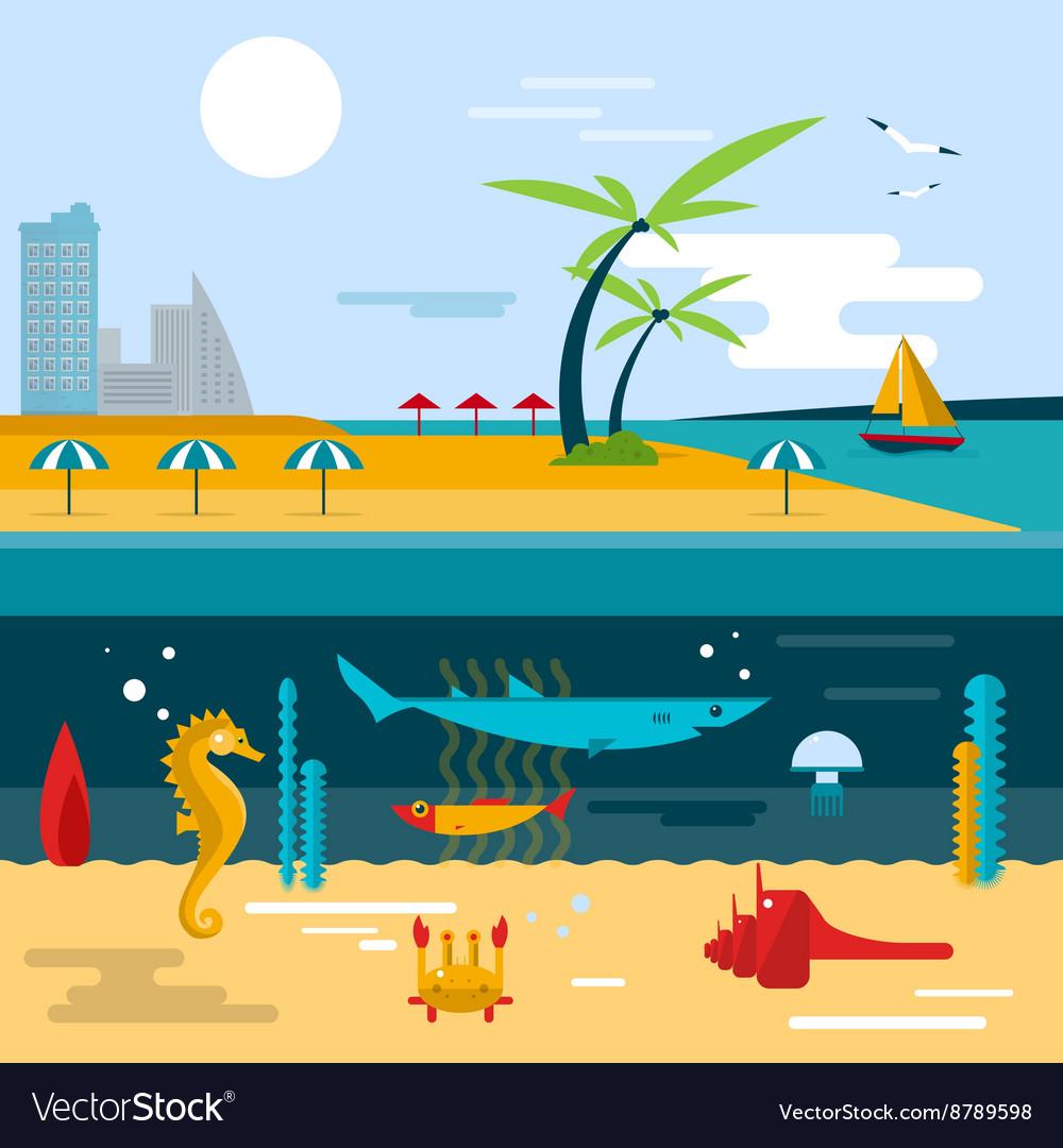 Beach and ocean underwater life vector image
