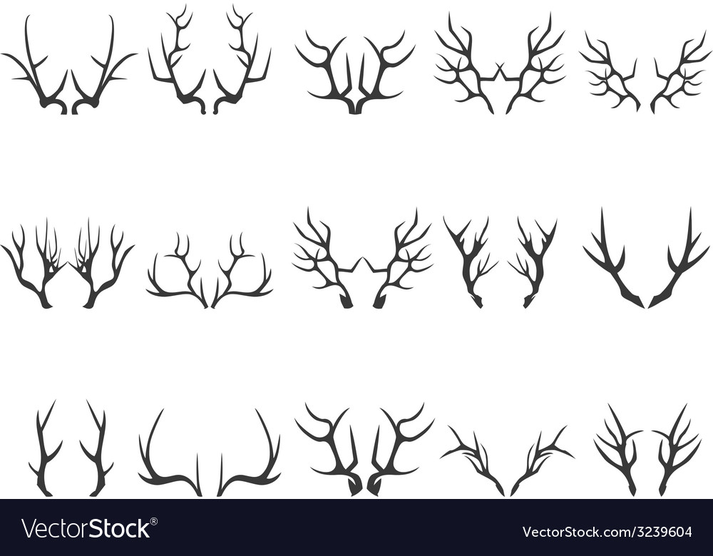Deer horns silhouettes vector image