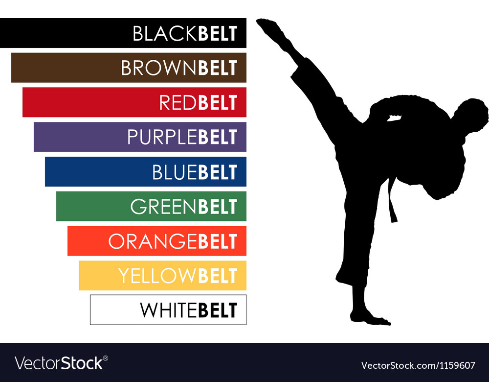 Karate background Vector Image