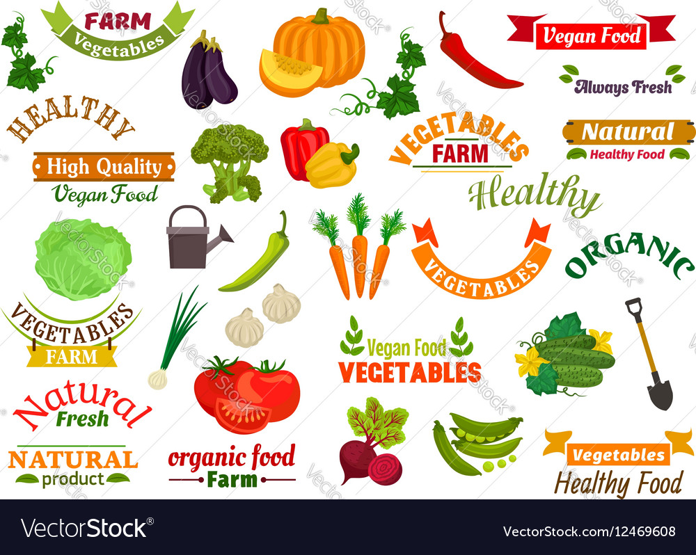 Vegetables vegetarian emblems ribbons set vector image
