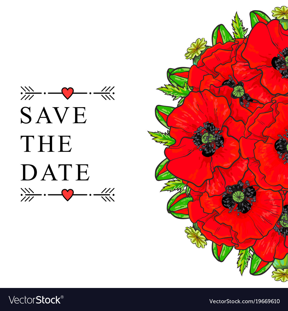 Hand drawn poppy bouquet save the date vector image
