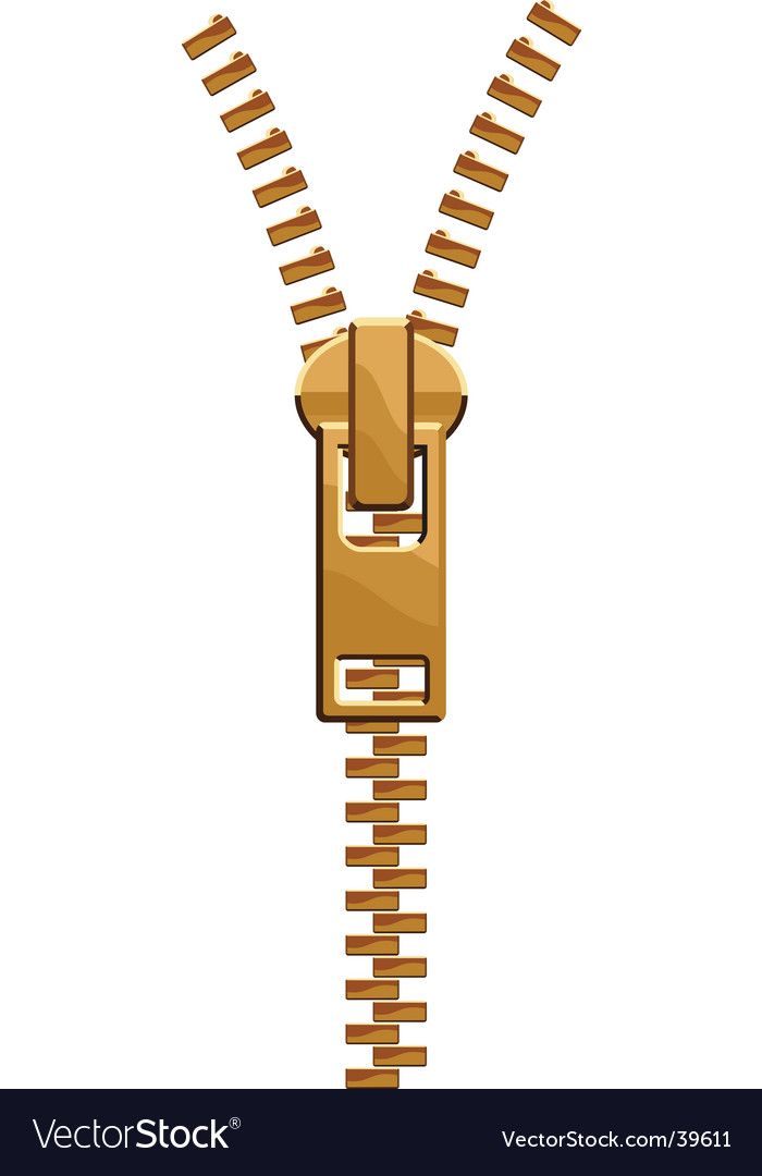 Isolated zipper vector image