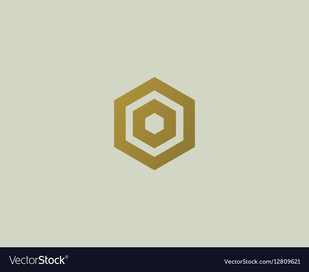 Abstract letter O logotype Line hexagon vector image