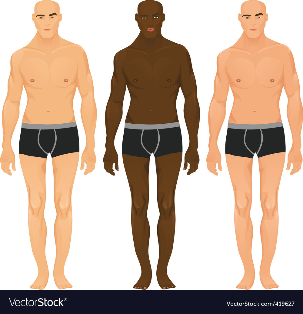 Male models vector image