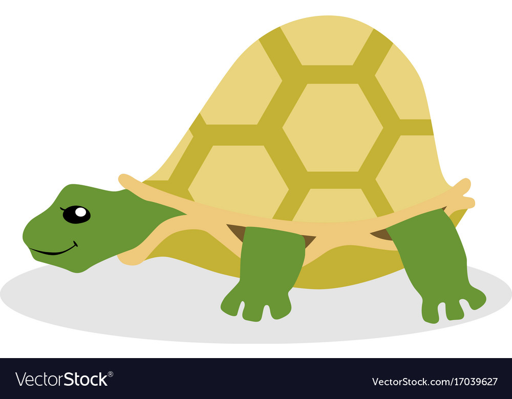 Turtle flat vector image