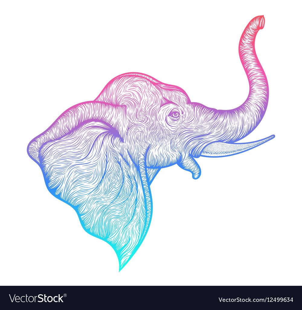 Head of a elephant in profile line art boho design vector image