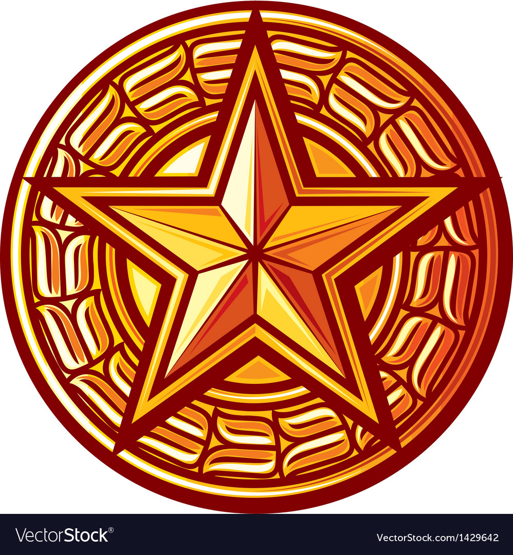 Star badge vector image