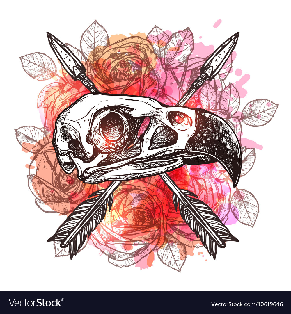 Design With Eagle Skull And Arrows vector image