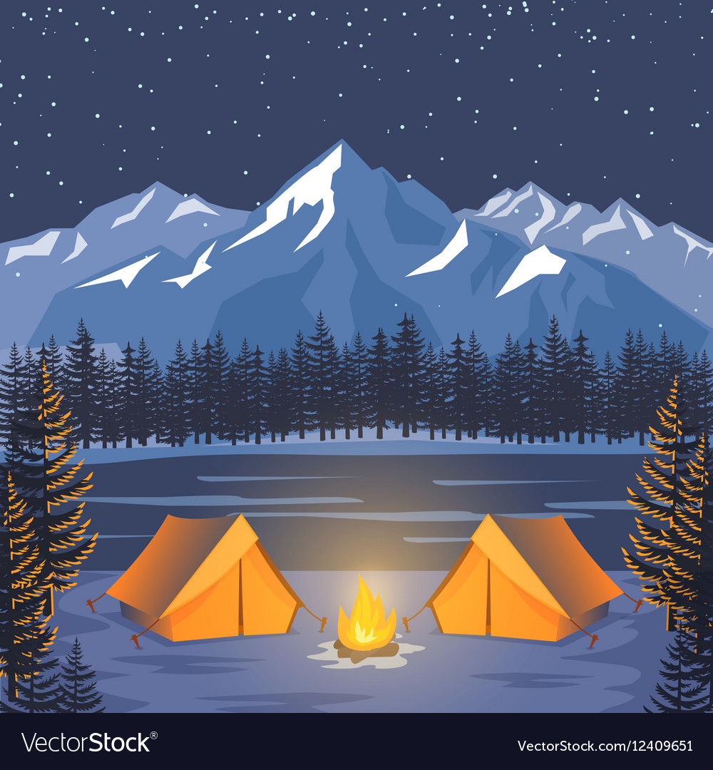 Nature adventure poster night landscape with vector image