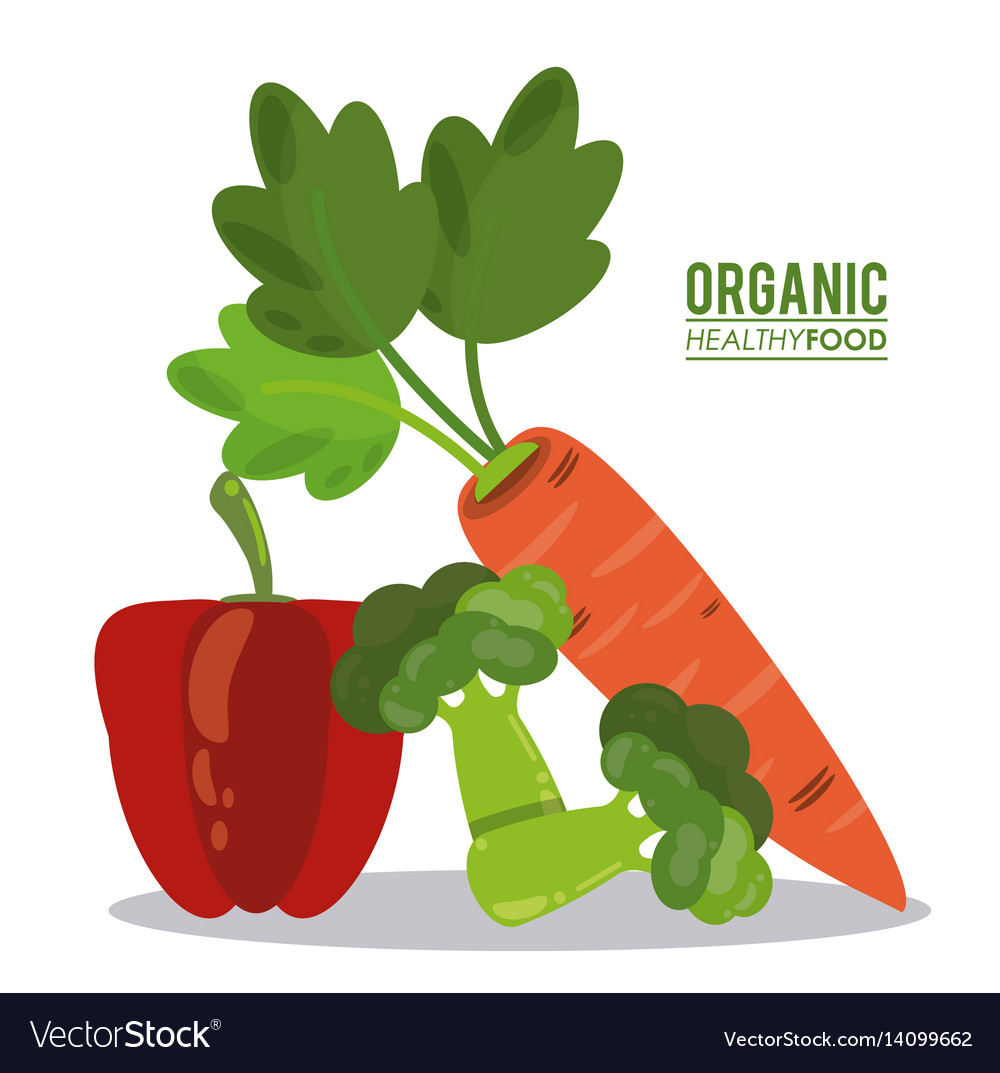 Organic healthy food pepper broccoli and pea vector image