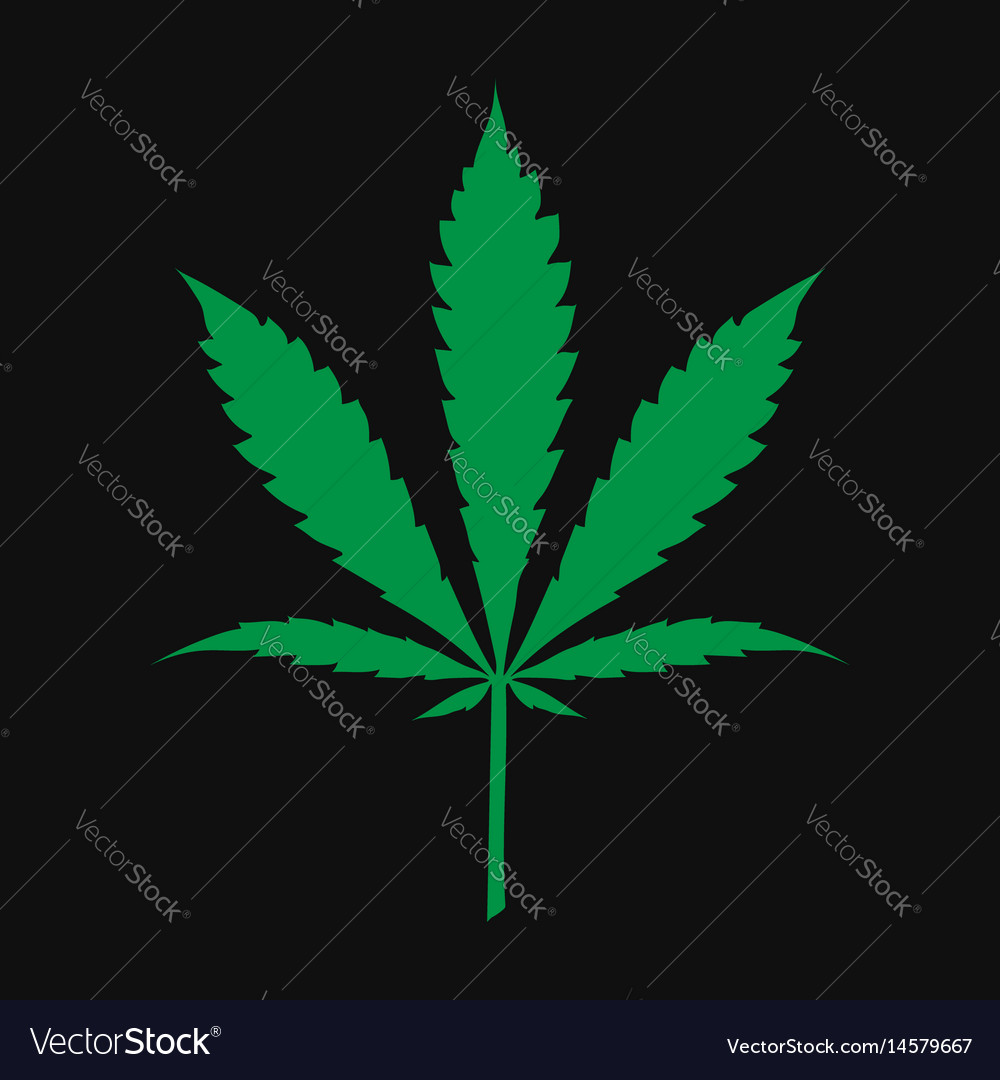 Marijuana cannabis leaf vector image