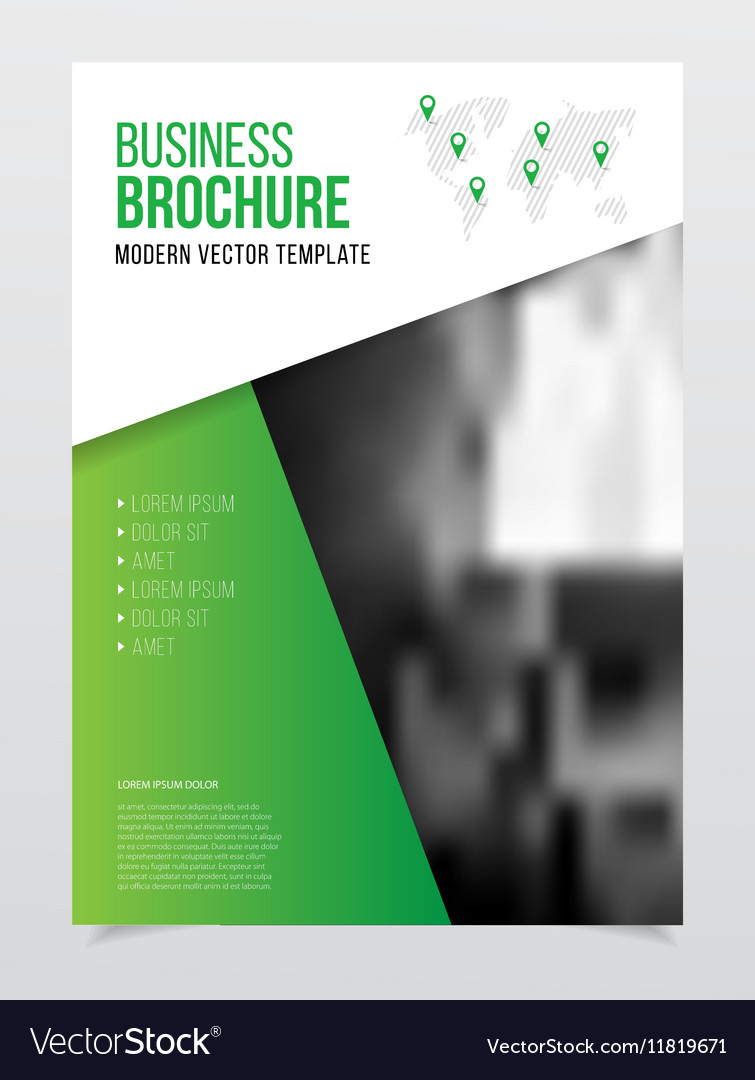 Business Brochure design Annual report temp vector image