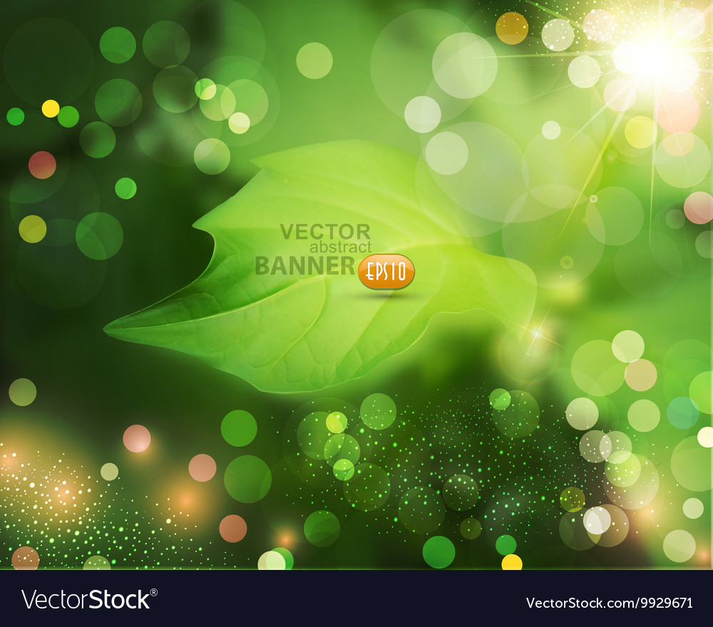 Summer background with green blur and leaf vector image