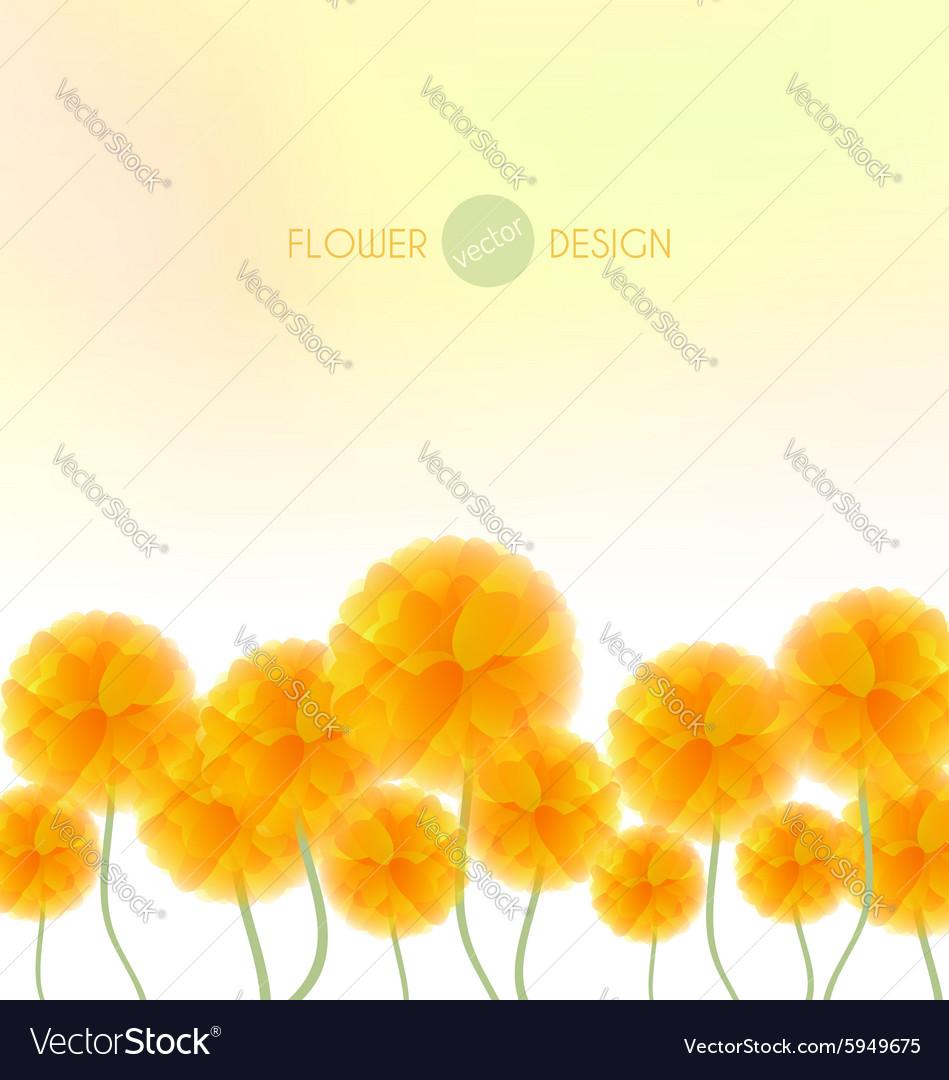 Yellow flowers vector image