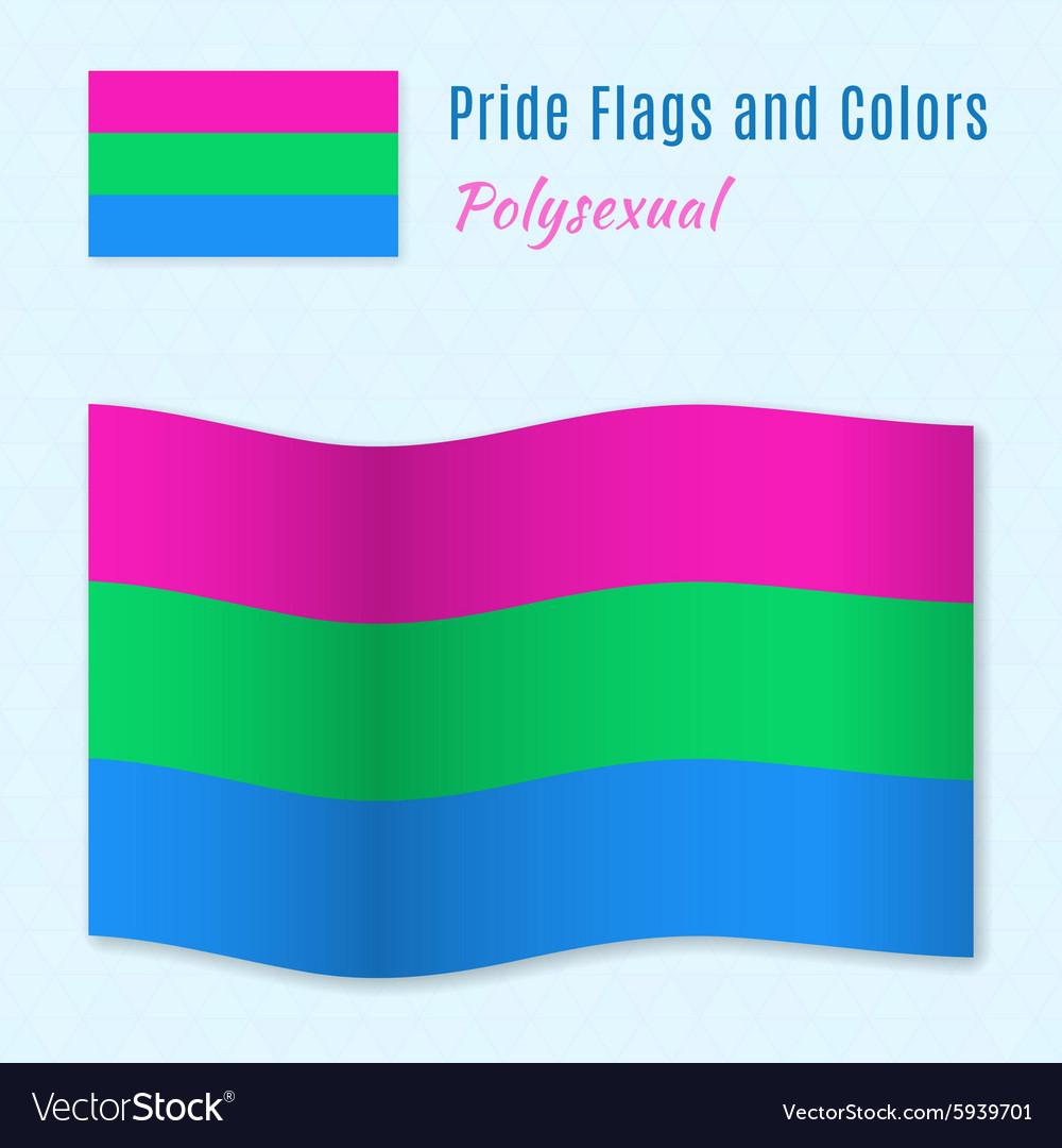 Polysexual pride flag with correct color scheme vector image