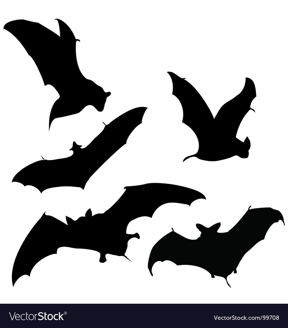 flying bats silhouettes royalty free vector image