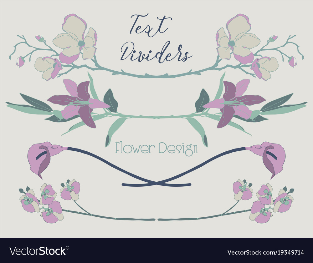 Colorful floral text dividers flower vector image