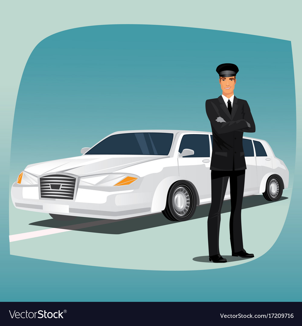 Chauffeur of limousine or lincoln vector image