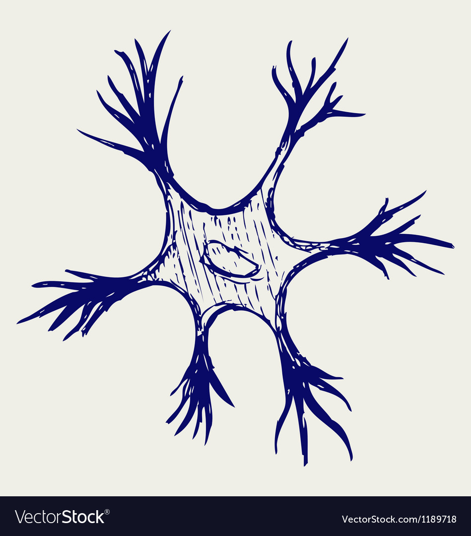 Neuron vector image